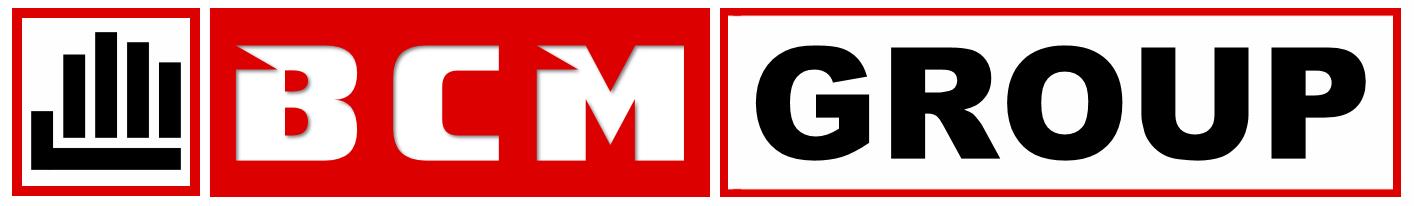 Realizzazione Siti Web: BCM Group | Web Agency